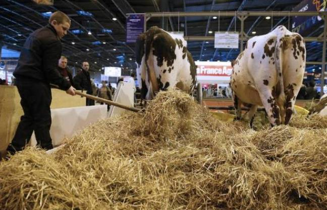 Salon de l 39 agriculture la nocturne annul e cause de l for Salon agriculture paris 2015