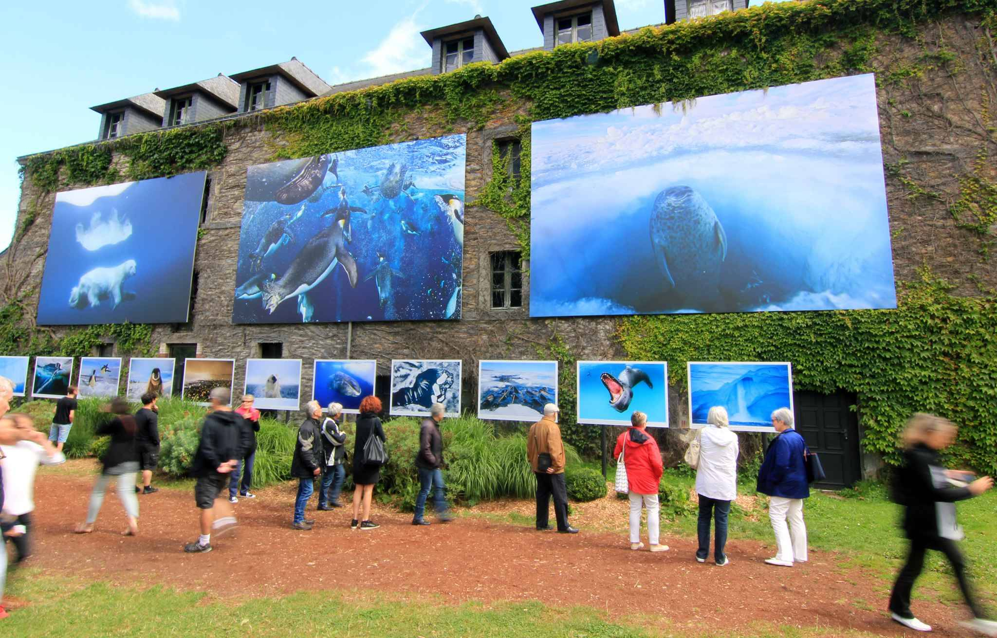 Bretagne record historique pour le festival photo de la gacilly - Festival photo la gacilly ...