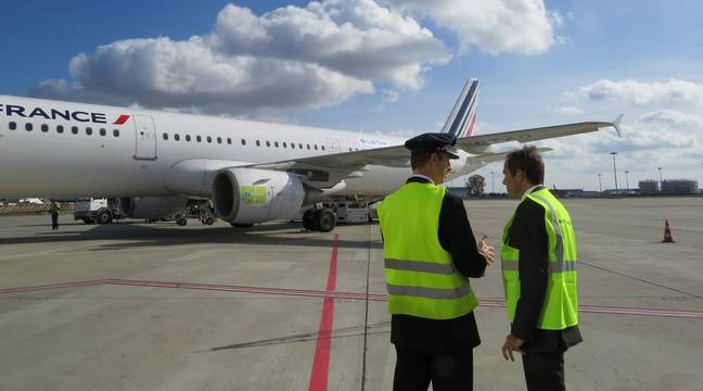 Toulouse air france teste le biocarburant sur sa ligne toulouse orly - Comptoir air france toulouse ...