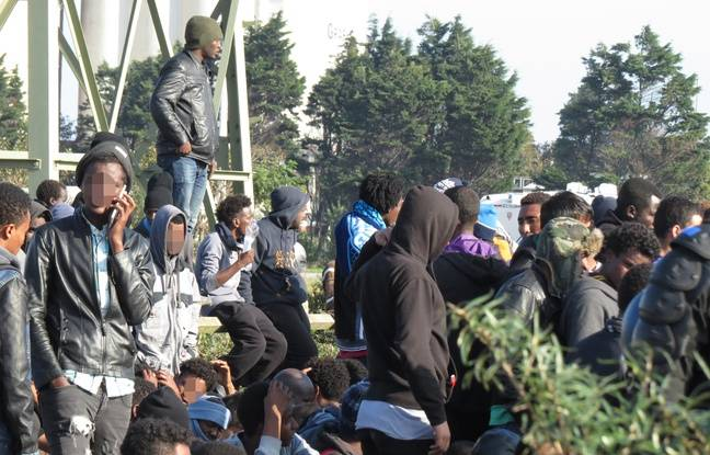 Migrants en attente d'évacuation à Calais, le 25 octobre 2016