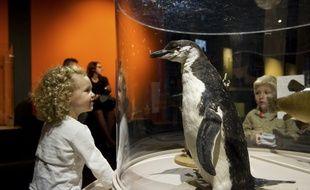 L'exposition Bébés animaux à la Cité des sciences (Paris 19e) du