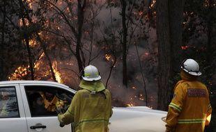 Des pompiers australiens parlent à des résidents de Mangrove Mountain, dans la banlieue nord de Sydney. La région est en proie à des incendies.