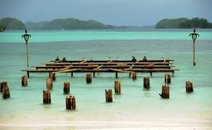 Le jeu de l'equilibre sur l'eau dans le jeu d'aventure Koh-Lanta, diffusé par TF1.