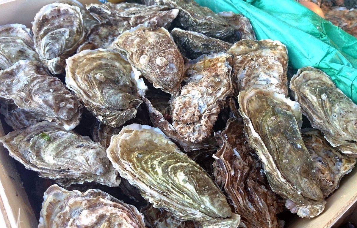 Le producteur Gillardeau marque d'un «G» toutes ses huîtres (illustration). – ALLILI MOURAD/SIPA