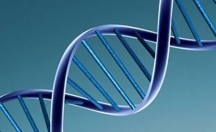 Dans plusieurs fictions, la mémoire génétique, contenue dans l'ADN, existe. Dans la réalité, pas tout à fait.