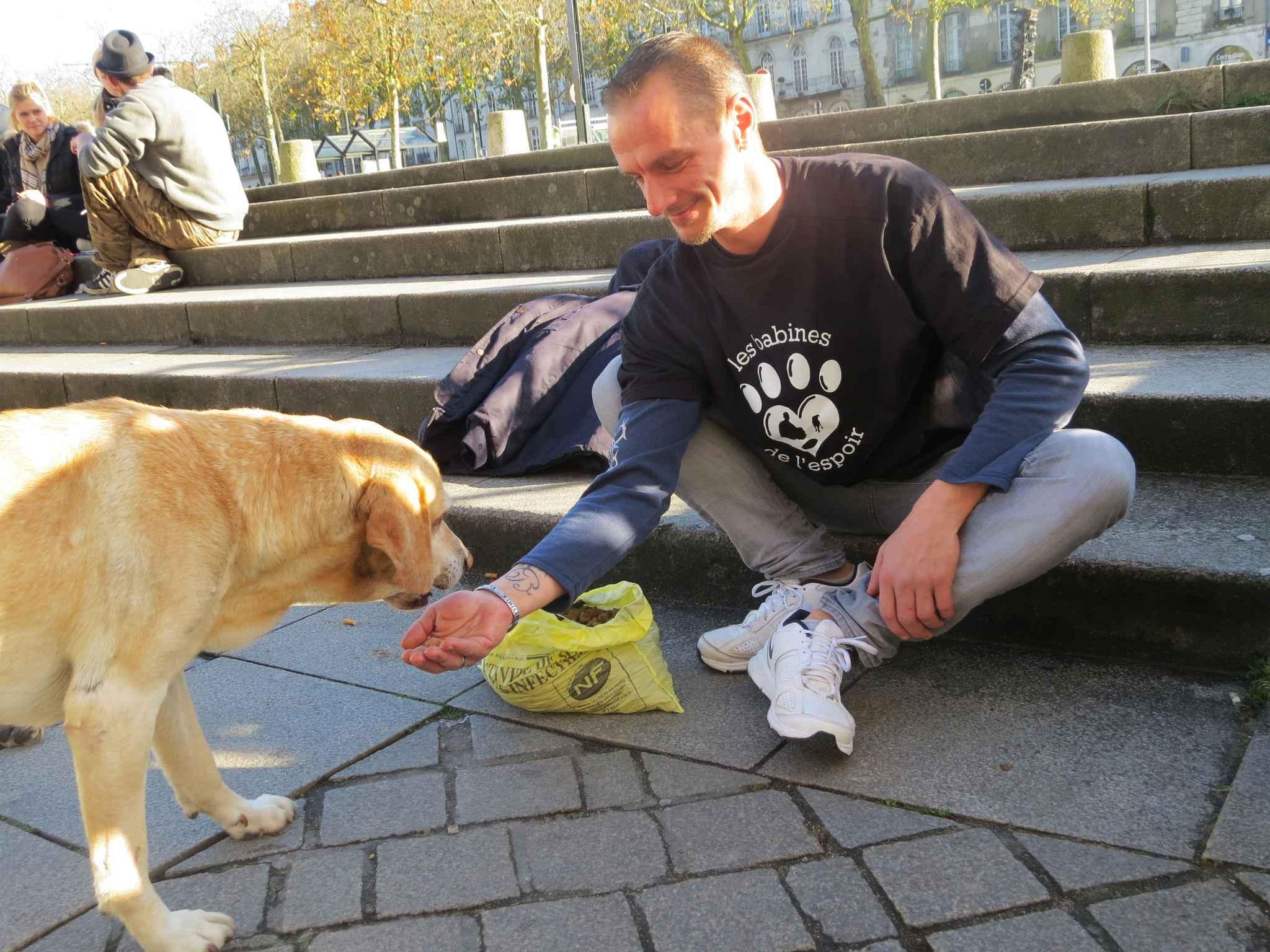 Nantes: Il crée des «Restos du coeur» pour les chiens des