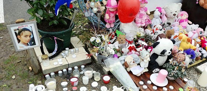 Un lieu à la mémoire de Maëlys, à Pont-de-Beauvoisin le 15 février 2018, commune où la fillette avait disparu.
