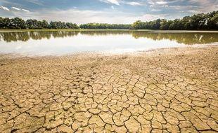 Les effets de la sécheresse en France, à Saint-Andre-de-Corcy, au mois d'août 2015.