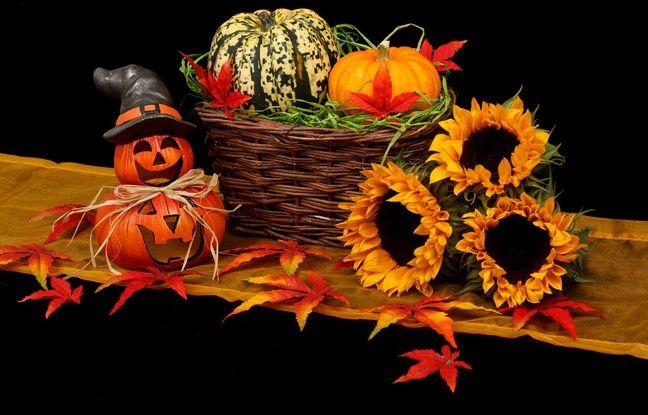 Décorations d'Halloween.