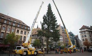 VIDEO. Strasbourg: Et si on arrêtait d'installer un grand sapin de Noël place Kléber? (Archives)