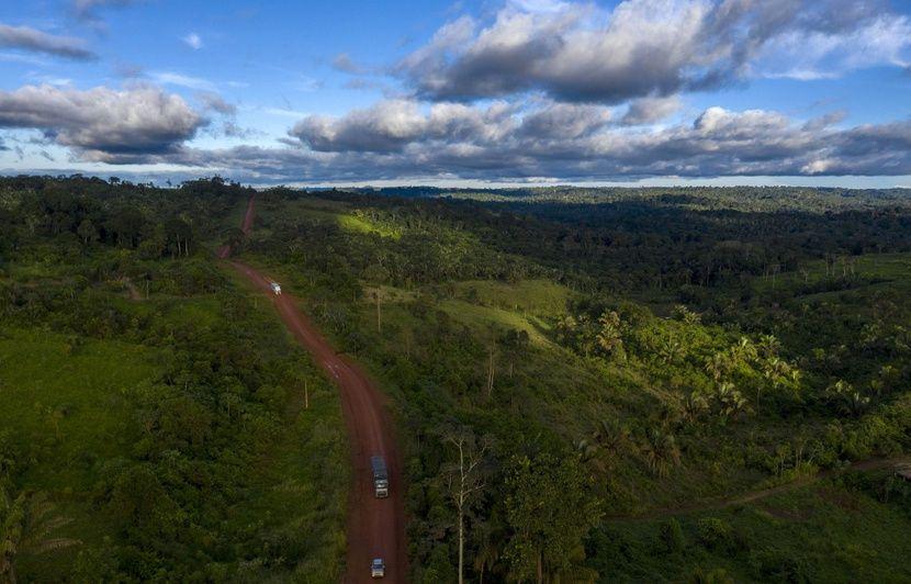 Amazonie : Une pétition pour « stopper l'incendie » récolte plus de deux millions de signatures
