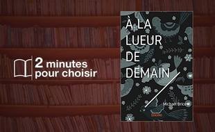 «A la Lueur de Demain» par Michael Brice chez Edilivre-Aparis (10,50€).