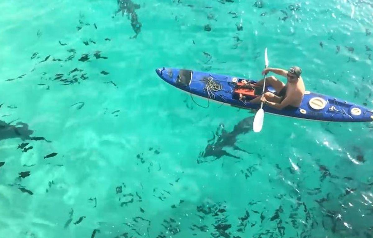 Il fait du canoë au milieu des requins - Le Rewind (video) – Capture d'écran
