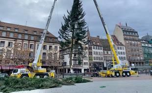 Installation du grand sapin de Noël place Kléber à Strasbourg. Le 1er novembre 2020.