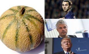 Un melon parmi d'autres.