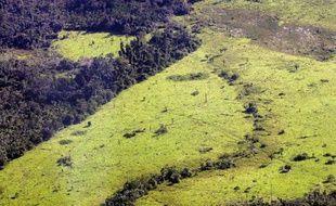 Vue aérienne de 2005 illustrant la déforestation en Amazonie, dans le nord du Brésil