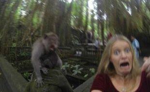 Un singe vient gâcher le selfie de cette jeune fille