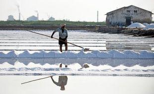 Récolte de sel en Inde (image d'illustration).