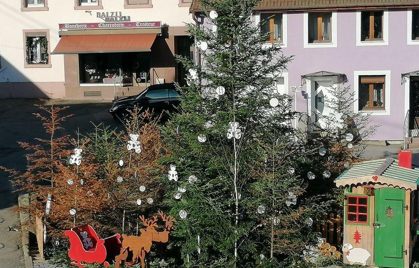 Alsace : Pour alerter sur la sécheresse, une commune installe des sapins morts comme décoration de Noël