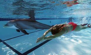 Un robot dauphin pour remplacer les vrais dauphins dans les parcs