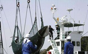 Le Japon a annoncé mercredi 26 décembre 2018 son retrait de la Commission baleinière internationale (CBI) dans le but de reprendre la chasse commerciale dès juillet 2019.