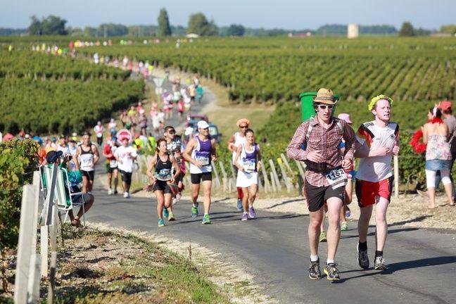 Les coureurs au milieu des vignes du Médoc.