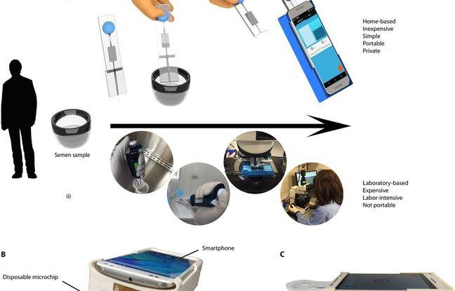 Des scientifiques ont mis au point Fertilex, un système simple relié à un smartphone pour tester rapidement, avec un haut degré de fiabilité, la qualité du sperme, offrant un test de fertilité à domicile bon marché.