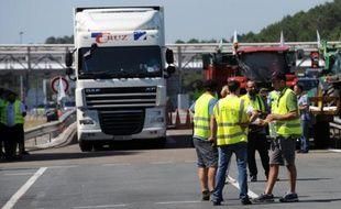 Des agriculteurs manifestent et mènent des actions de contrôle dans des camions pour vérifier l'origine des produits sur l'A63 au péage de Benesse-Maremne, le 5 août 2015