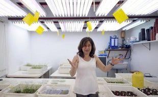 C'est dans un modeste laboratoire, en pleine région agricole argentine, que la chercheuse Raquel Chan a réussi à isoler un gène de tournesol résistant à la sécheresse et à le placer dans du soja, ce qui promet une révolution biotechnologique.