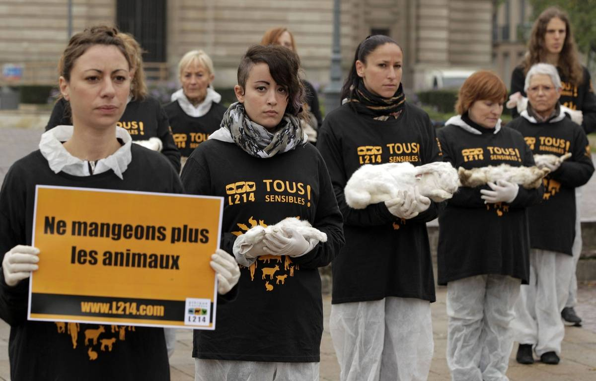 Manifestation de L214 à Lille en 2013 pour dénoncer l'élevage de lapins. – 20 MINUTES/SIPA