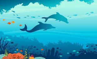 Illustration d'un fond océanique