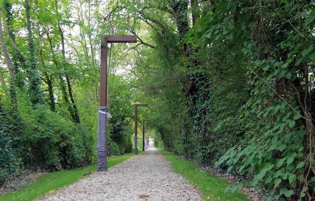 Les prairies Saint-Martin, à Rennes, où un parc naturel urbain est en cours d'aménagement.
