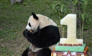 Bei Bei avait déjà eu droit à un beau gâteau pour son premier anniversaire.