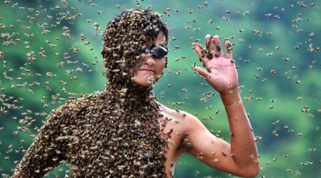 L'apiculteur chinois Lu Kongjiang se laisse recouvrir par 26kg d'abeilles lors d'un concours, le 17 juillet 2011.  – LU JIANSHE/CHINE