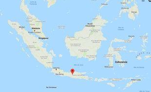 Des dizaines de nouvelles espèces ont été découvertes lors d'une expédition au large de l'île de Java.