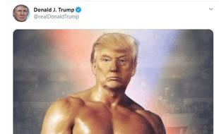 Capture d'écran du compte Twitter de Donald Trump.