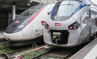 Deux trains stationnent en gare de Toulouse (Illustration).