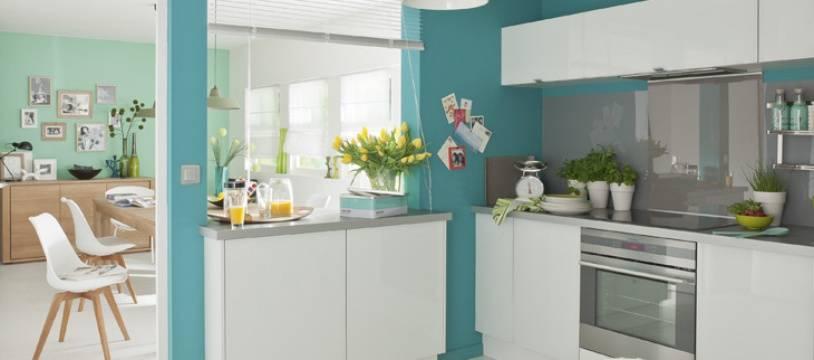 Une cuisine intégrée de Leroy-Merlin (illustration).
