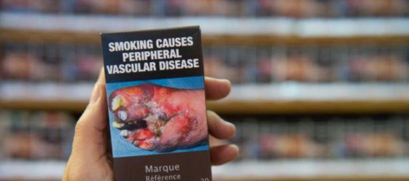 Un tabagiste tient un modèle de paquet neutre le 8 septembre 2015 à Colmar, en Alsace