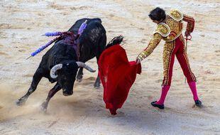 Une corrida à Nîmes (image d'illustration).