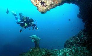 Les îles Medes, en Espagne, sont très prisées des amateurs de plongée. Ici, la Grotte du Dauphin.
