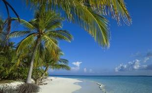 L'atoll Ari des Maldives. Image d'illustration.