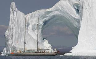 Tara au Groenland.
