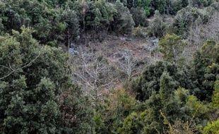 Les autorités grecques ont saisi en 2012 quelque 13.000 tonnes de bois coupé illégalement dans des forêts en Grèce, où le chauffage au bois a fait un bond après le relèvement des taxes sur le fioul domestique, a indiqué mardi le ministère grec de l'Environnement.