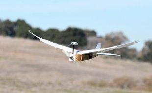 Un drone qui s'envole comme un oiseau