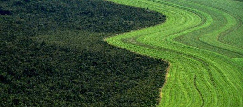 Vue aérienne prise le 29 mai 2019 montrant un champ agricole dans la région de savane du Cerrado à Formosa do Rio Preto, dans l'ouest de l'État de Bahia au Brésil.