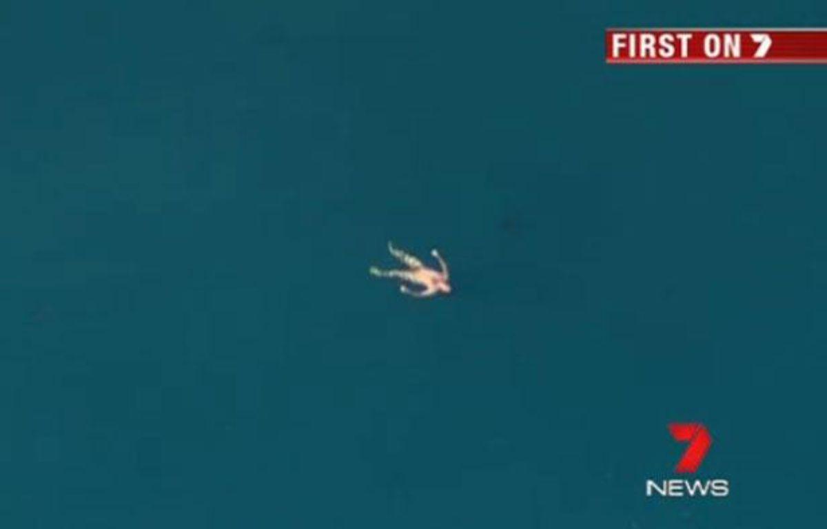 Un pêcheur en détresse au large de Leeman, en Australie, le 10 août 2012 - capture d'écran d'une vidéo de 7 News. – 20MINUTES.FR