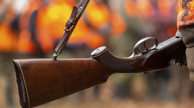 Var : Des chasseurs s'introduisent sur son terrain malgré une interdiction, un couple s'indigne