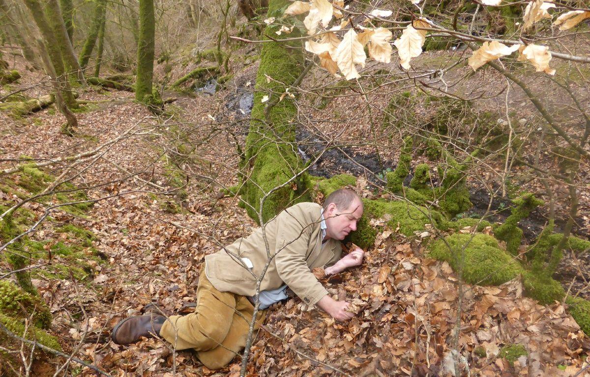 Charles Foster se repose au creux d'un arbre lors de l'une de ses immersions dans la peau d'une bête. – Photo Charles Foster