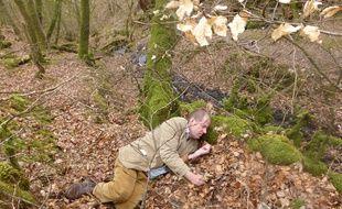 Charles Foster se repose au creux d'un arbre lors de l'une de ses immersions dans la peau d'une bête.